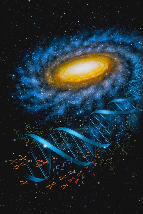 Other Galaxies In The Universe With Life (page 4) - Pics ...